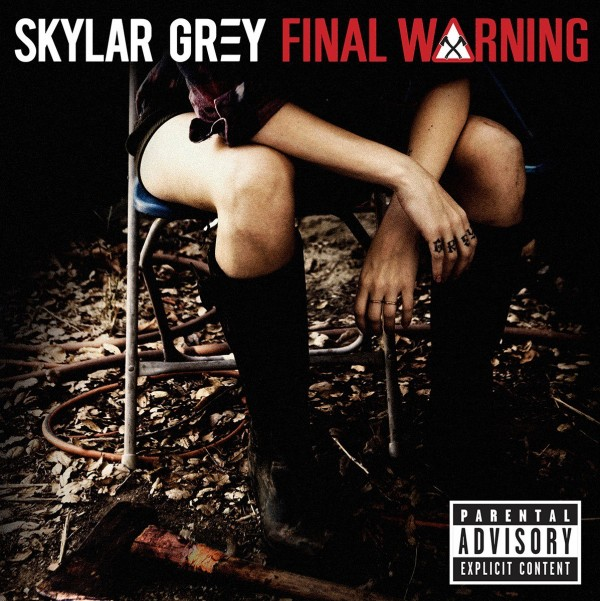 Skylar Grey - Final Warning (Cover)