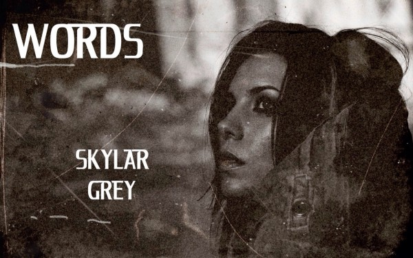 Перевод песни Skylar Grey - «Words»